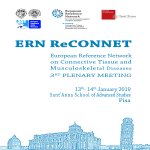3rd ERN ReCONNET PLENARY MEETING (PISA, 13-14 JANUARY 2019)